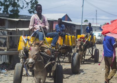 Donkey carts travelling through the streets